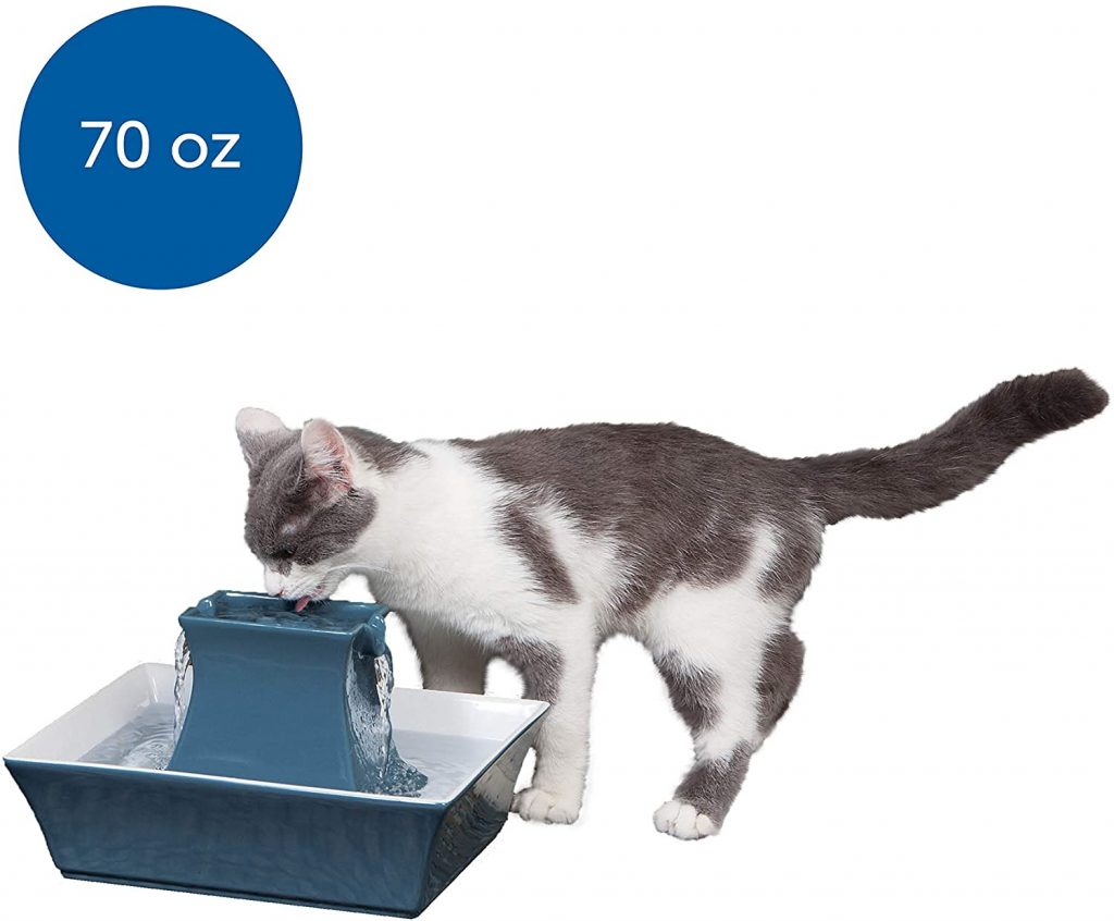 easy to clean cat water fountain