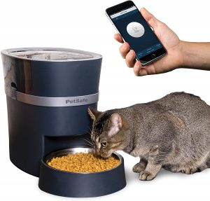 time release cat food dispenser