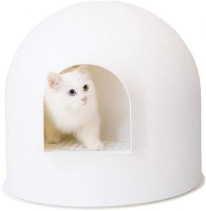 best litter box to keep dogs out