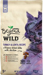 Best Food For Bengal Kittens